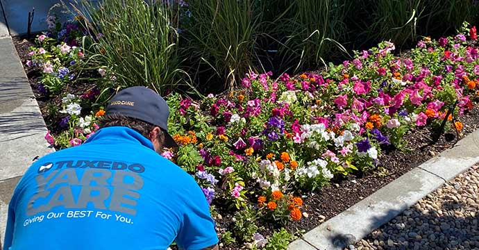 Tuxedo Mulch Installation Service for a beautiful flower bed in Layton, Utah
